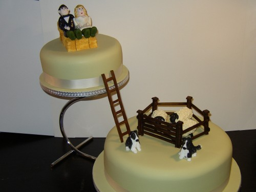 2 Tier Round Farming Inspired Wedding Cake