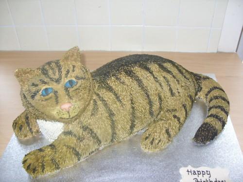 Tortoiseshell Cat Birthday Cake