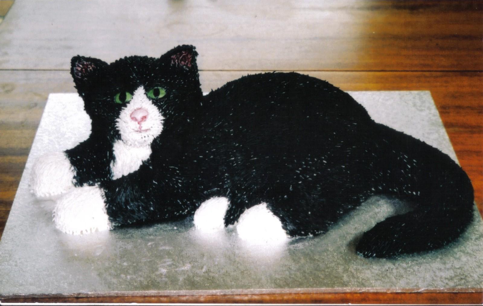Cat Cake Cake Ideas and Designs