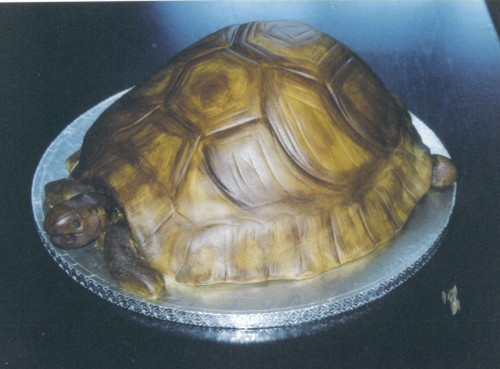 Novelty Tortoise Birthday Cake