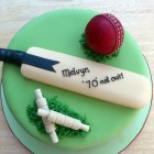 cricket themed novelty birthday cake