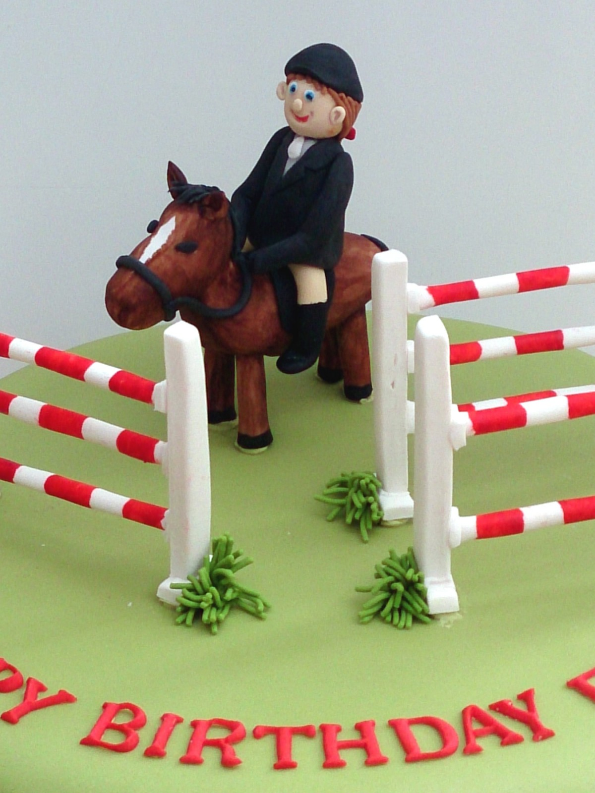 Show Jumping Themed Novelty Cake 171 Susie S Cakes