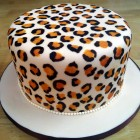 leopard print birthday cake with leopard print sponge