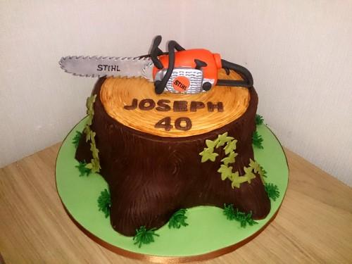 tree surgeon tree stump chain saw birthday cake