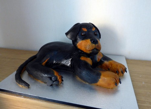 Rottie Dog Novelty Birthday Cake