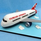 childs own airline aeroplane birthday cake
