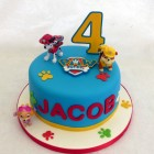 paw patrol novelty birthday cake