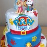 paw-patrol-and-elsa-frozen-and-belle-beauty-and-the-beast-half-and-half-cake thumbnail