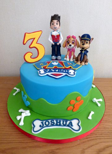 Paw Patrol Inspired Birthday Cake with Ryder Chase And Skye