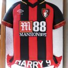 bournemouth-2018-19-shirt-cake