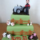 grey-fergie-tractor-farmer-themed-birthday-cake